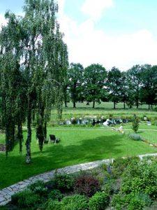 geomantisch gestalteter Garten mit Schwimmteich sowie Neuanlage von Berg- und Wasserdrachen