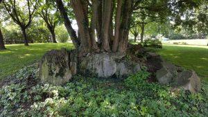 Das Großsteinkammergrab Kirchborchen II mit Seelenloch am Eingang nach Nordosten
