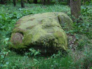 Der nördliche Opferstein im Leistruper Wald steht auf einem Kraftplatz als Tor zur Anderswelt